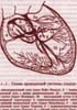 Зюзенков М.В. - Основы практической электрокардиографии